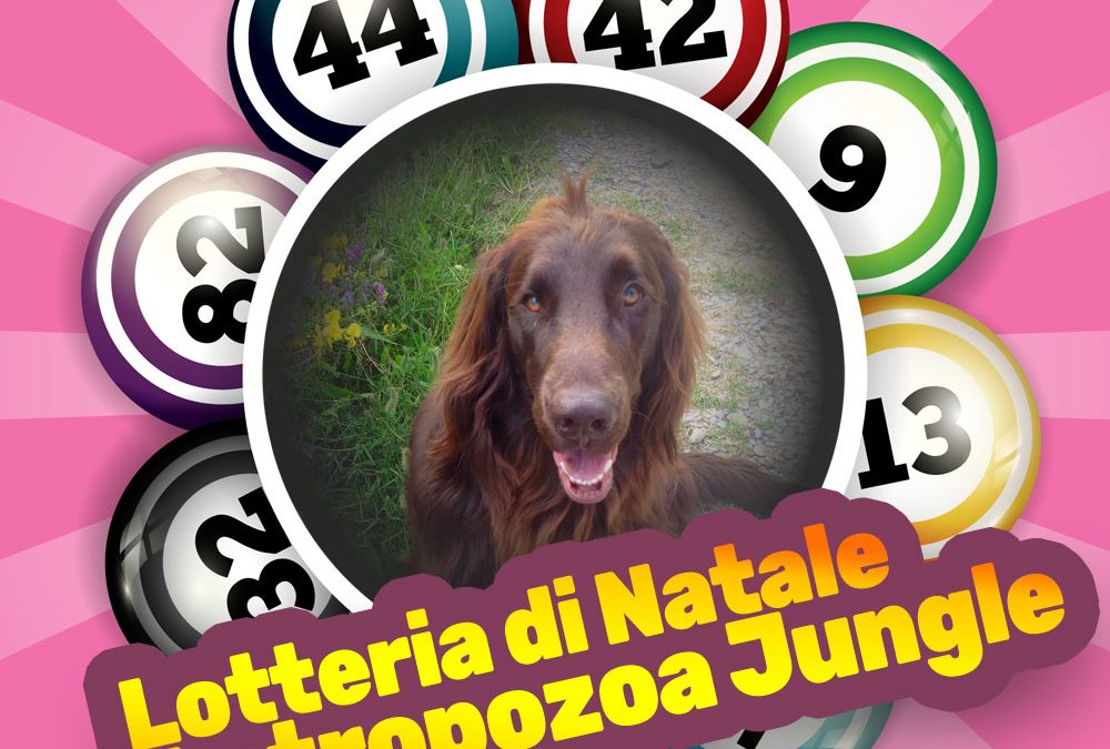 Lotteria Natale 2018 – Antropozoa Jungle